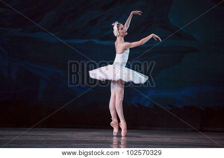 Prima ballerina white swan