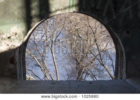 view from the window in the old abandoned building. soft-focused focus on the outside trees poster