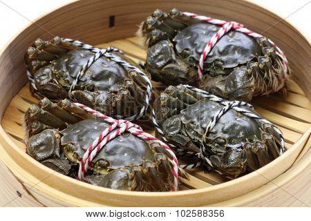 raw chinese mitten crab, shanghai hairy crab in bamboo steamer