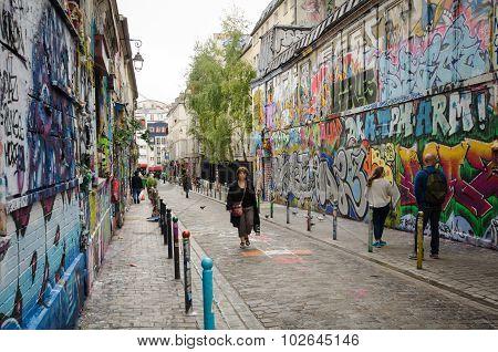 Dazzling street art on Rue Denoyez in Paris