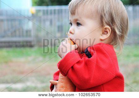 Baby Biting  Carrot