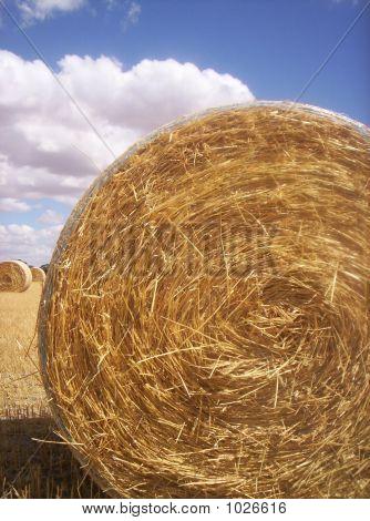Haystack Roll 1