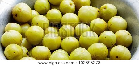 Freshly plucked Indian Gooseberry kept in a container