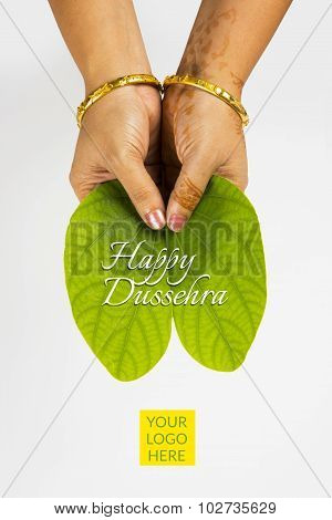 Piliostigma racemosum, indian lady holding dussehra leaf in both hands, closeup on white background