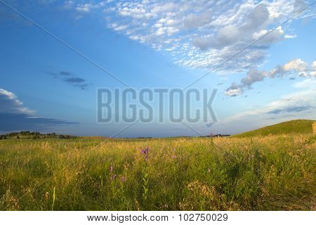 Prairie grassland landscape
