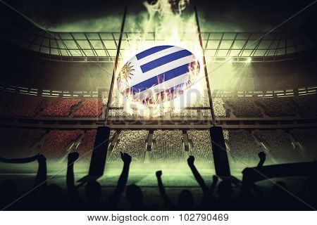 Silhouettes of football supporters against rugby pitch