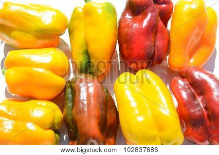 Peppers Yellow And Red 1