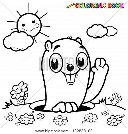 Coloring book groundhog