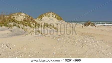 Sand Dunes On The Ocean Shore