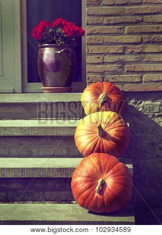 pumpkins on the porch of the house, harvest time