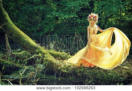 Dreamy blonde beauty posing in a mystic forest