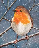 My oil pastel illustration of a chubby English Robin perched on a snow-covered branch as flakes of snow fall against a wintry sky. poster