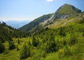 Serene View of Landscape in Visitor Mountains (Bandera peak) Montenegro poster