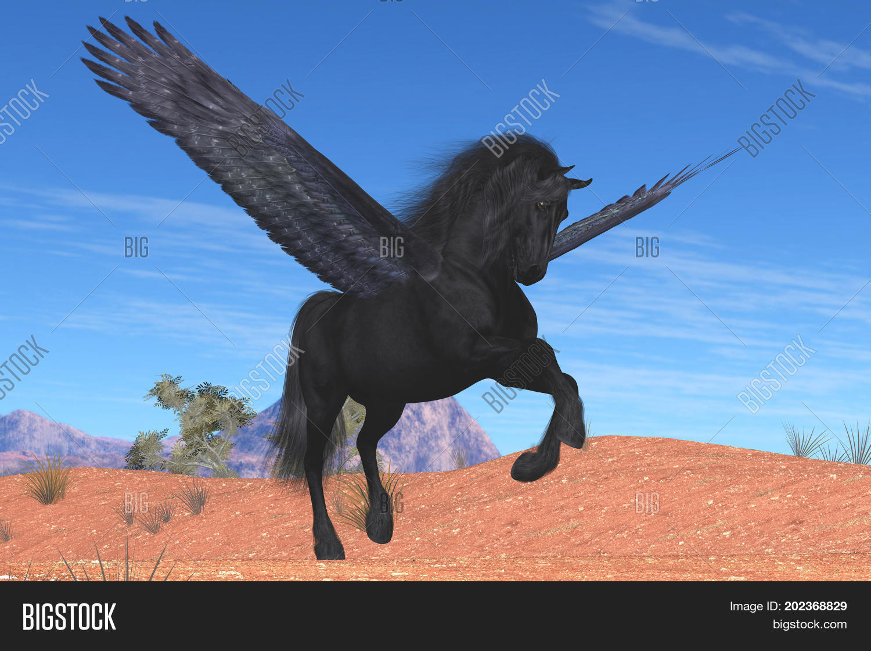 Black Pegasus Horse 3d Image Photo Free Trial Bigstock