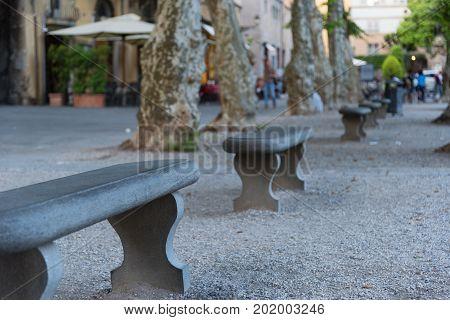 Piazza Napoleone (Napoleone square) in Lucca, Tuscany, Italy