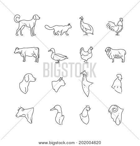 Farm animal and birds thin line icons. Farm pig and bird, rabbit and cow, vector illustration