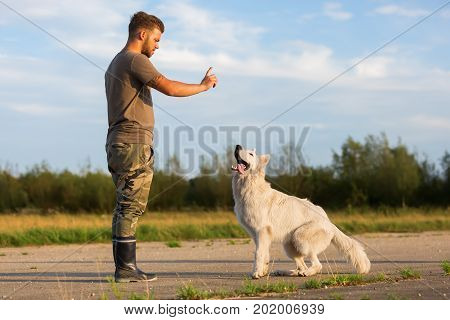 Young Man Gives His White German Shepherd A Command