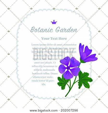 Colorful Watercolor Texture Vector Nature Botanic Garden Memo Frame Violet Mallow