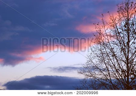 Blue clouds in a thunder-storm illuminated by the pink sun