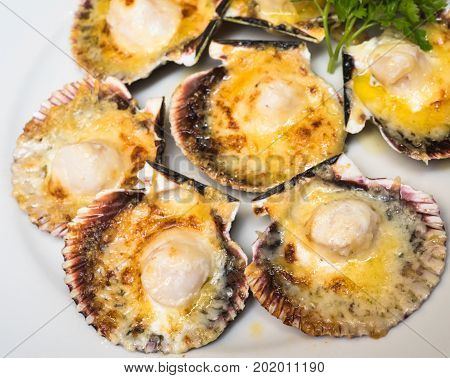 highly detailed image of baked parmesan scallops