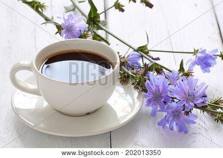 Cup Of Coffee Tea Chicory Drink With Chicory Flower On A White Table