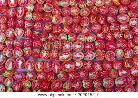 Preparing of dried tomato on baking sheet
