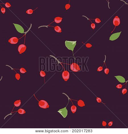 Seamless pattern of wild apples on a dark saturated background. Rich fashionable floral texture for interior, tiles, print, textiles, packaging and various types of design. vector.