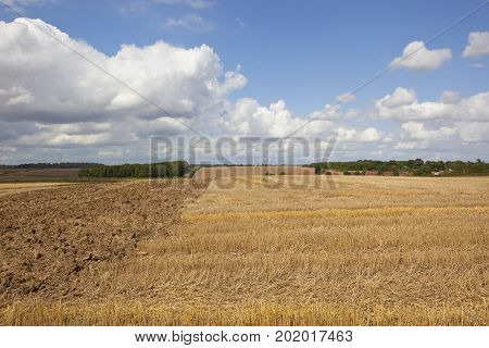 a harvested wheat field with woodland and a small village under a blue summer cloudy sky in the yorkshire wolds