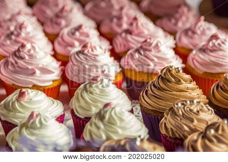 Dessert table for a party. Ombre cake, cupcakes. Wedding