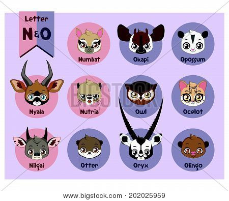 Animal Portrait Alphabet - Letter N And O