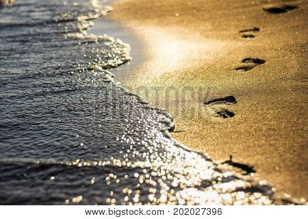 Close Up Of Footprints In The Sand At Sunset