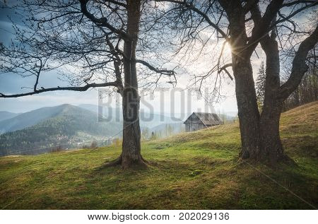 Sunrise In A Carpathian Mountain Village Yaremcha