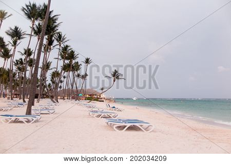Palapa And Lounge Chair On Golden Sand With Palm Tree
