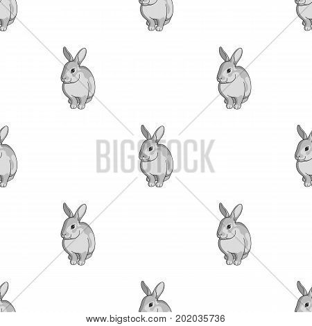 Gray rabbit.Animals single icon in monochrome style vector symbol stock illustration .