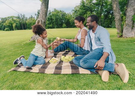 African American Family At Picnic