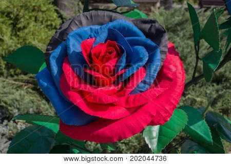 Artificial flower in the colors of the flag of the self-proclaimed Donetsk People's Republic. Donetsk