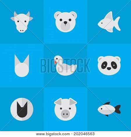 Elements Piggy, Perch, Fish And Other Synonyms Kine, Bird And Swine.  Vector Illustration Set Of Simple Zoo Icons.