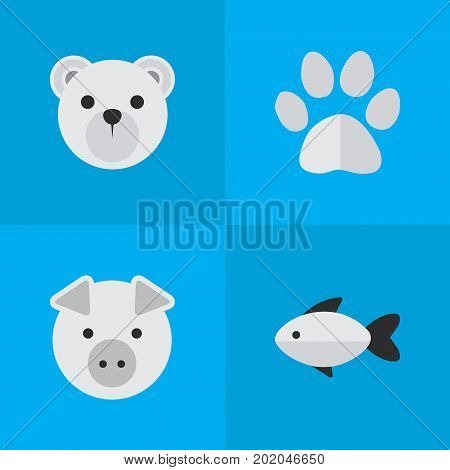 Elements Foot , Piggy , Panda Synonyms Foot, Perch And Paw.  Vector Illustration Set Of Simple Zoo Icons.