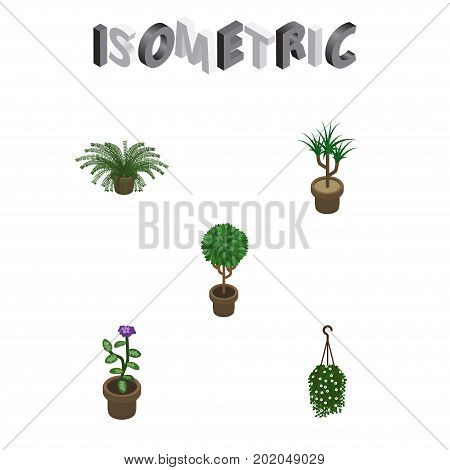 Isometric Plant Set Of Houseplant, Plant, Blossom And Other Vector Objects