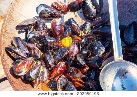 Steamed Mussels In White Wine Sauce