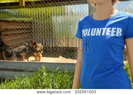 Female volunteer standing on the territory of dog shelter
