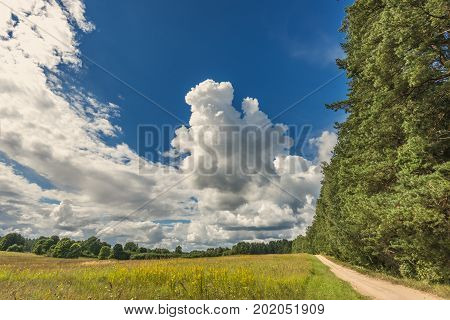Countryside road among fields and forest, summer time in Europe