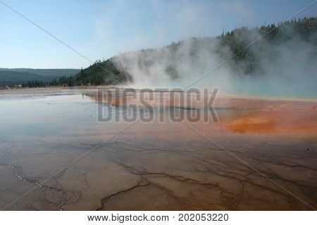 Part of Grand Prismatic Spring, early in the morning