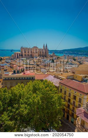 PALMA DE MALLORCA, SPAIN - AUGUST 18 2017: Gorgeous view of rooftops of the city of Palma de Mallorca with the Cathedral of Santa Maria in the horizont in a beautiful blue sunny day in Palma de Mallorca, Spain.