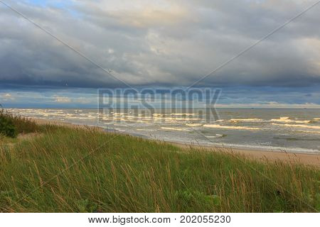 Wild grassy seaside in sunrise warm light against cloudy sky in summer, Palanga, Lithuania, Europe