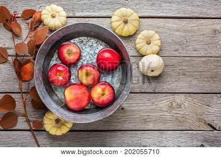 Autumn harvest background. Red ripe apples in clean water in metal basin, small pumpkins and dry leaves fall still life. Composition of fruits and vegetables on rustic wood with copy space, top view