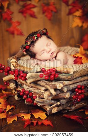 Cute newborn in a wreath of cones and berries in a wooden nest with autumn leaves