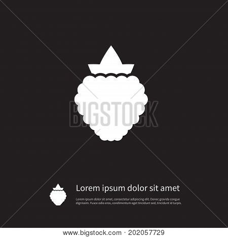 Dewberry Vector Element Can Be Used For Bramble, Blackberry, Dewberry Design Concept.  Isolated Blackberry Icon.