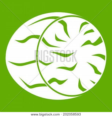 Half of nutmeg icon white isolated on green background. Vector illustration