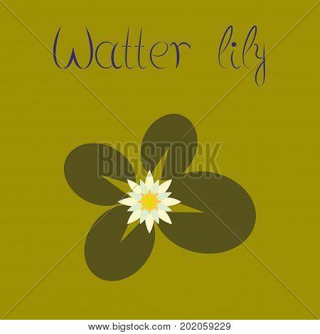 flat illustration on stylish background water lily